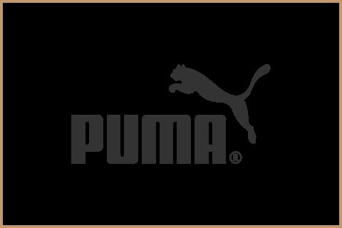 Puma_Retina